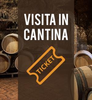 Visita in Cantina