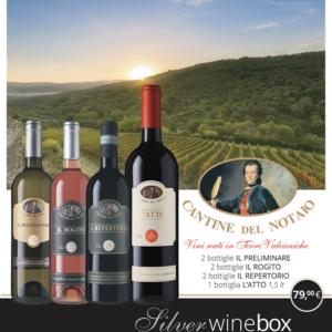 Silver Wine Box