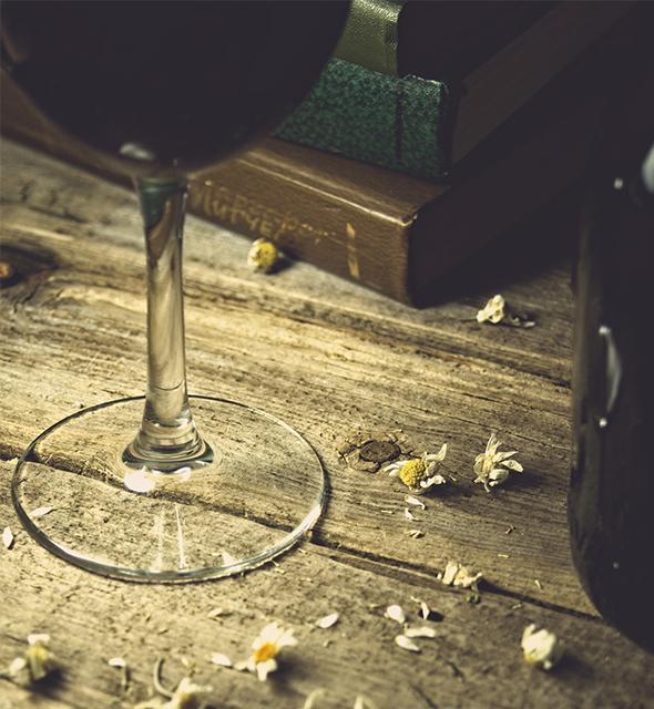 Le guide dei vini